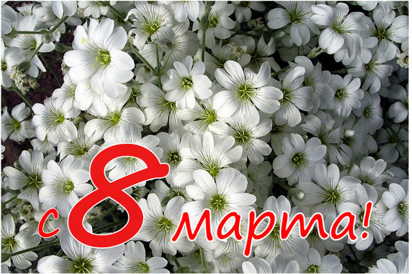 Поздравления для мамы с 8 марта от дочки и сына в стихах