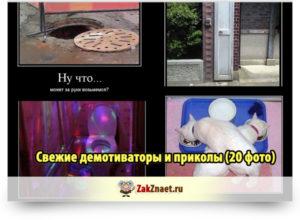 Свежие демотиваторы и приколы (20 фото)