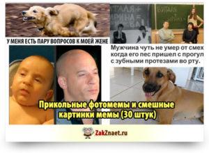 Прикольные фотомемы и смешные картинки мемы (30 штук)