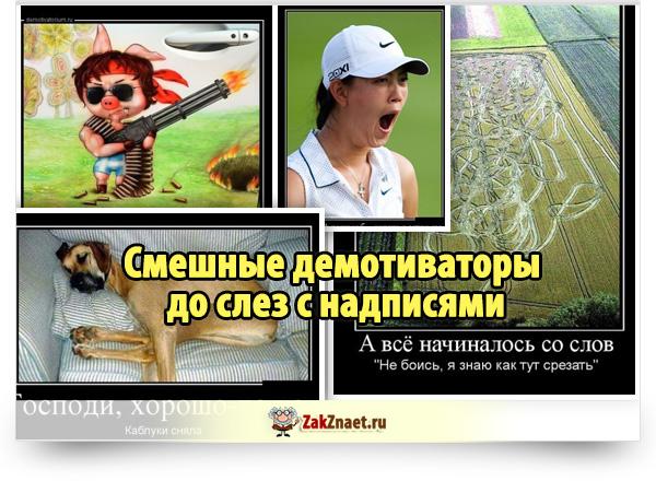Смешные демотиваторы до слез с надписями (15 фото)