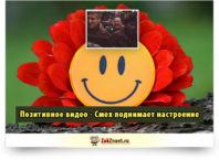 Позитивное видео - Смех поднимает настроение