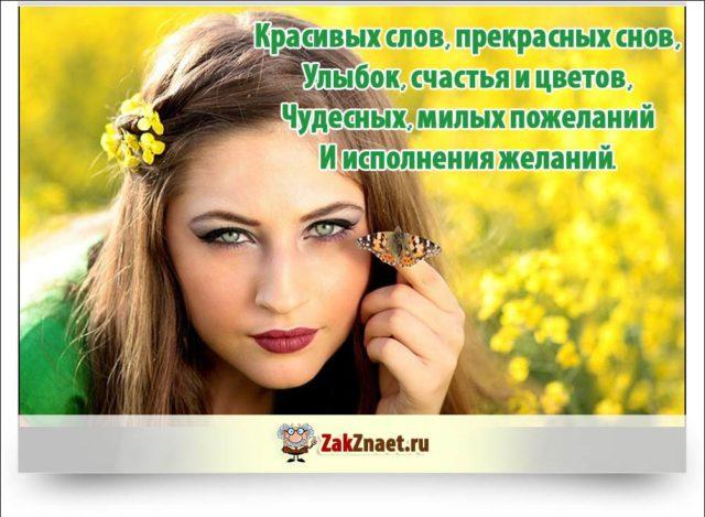 Изображение - Поздравления женщине с днем рождения коротко 8448756-640x469